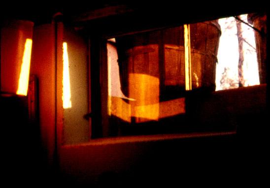 """Basement Window - Brantford, Ontario"""